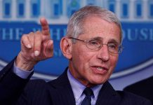 Rand Paul's Big 'I Told You So' to Fauci